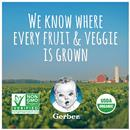 Gerber Organic Toddler Food, Apple Purple Carrot  Blueberry with Yogurt, 3.5 oz Pouch