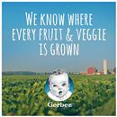 Gerber Toddler Apple Carrot Pineapple
