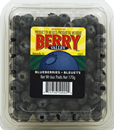 Berry Valley Blueberries